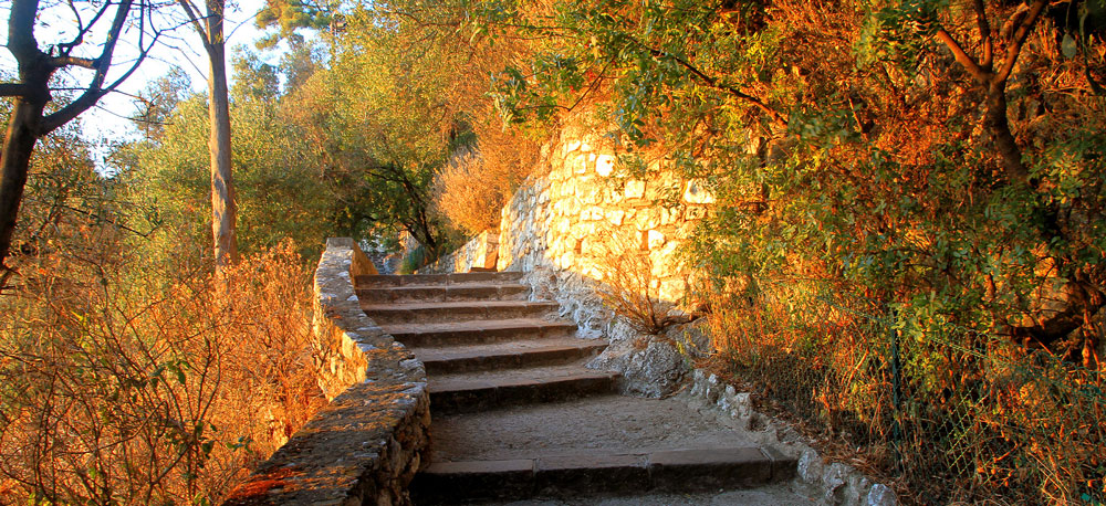 Path With Stairs